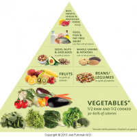 Dr. Fuhrman's Food Pyramid