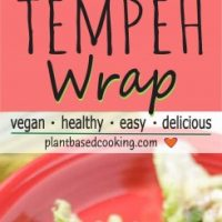 CURRIED TEMPEH WRAP on red plate