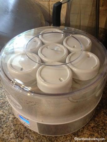 Homemade Soy Yogurt