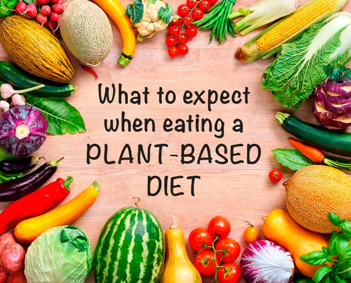 change to plant based diet emotional
