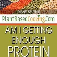 Am I getting enough protein on a Plant-Based Diet? 3 wooden spoons with dried legumes