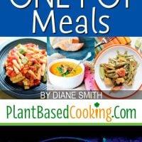 20 Delicious Vegan One Pot Meals Article
