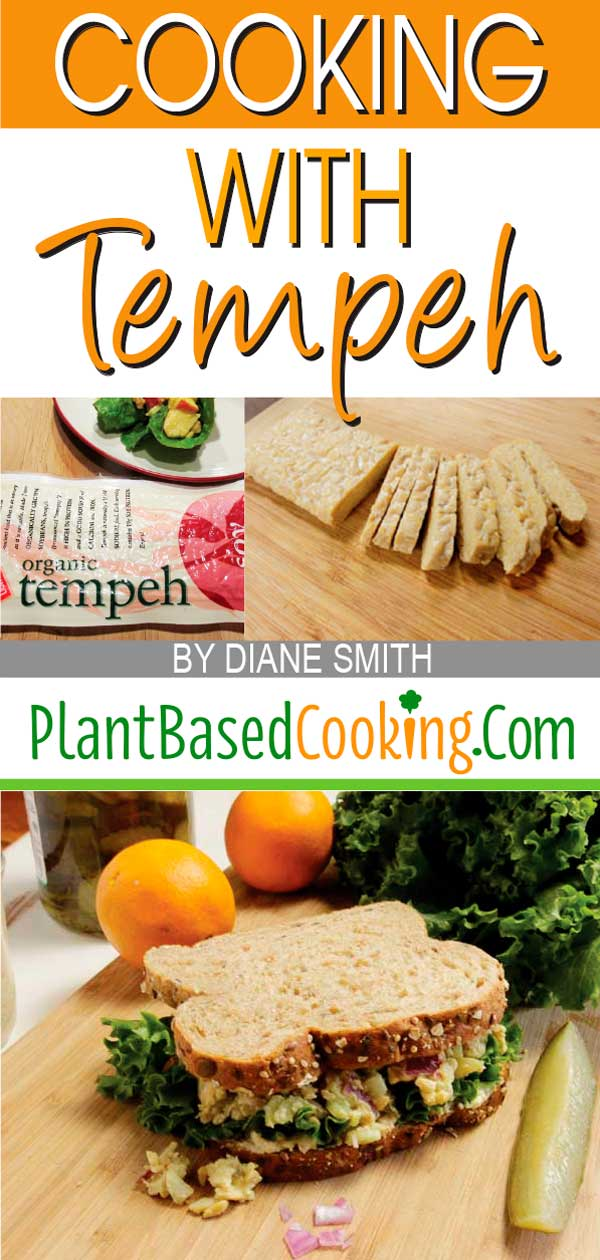 COOKING WITH TEMPEH ARTICLE