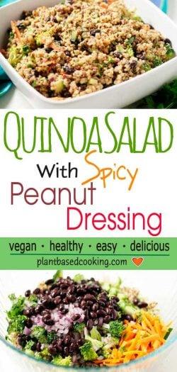Quinoa Salad with Spicy Peanut Dressing