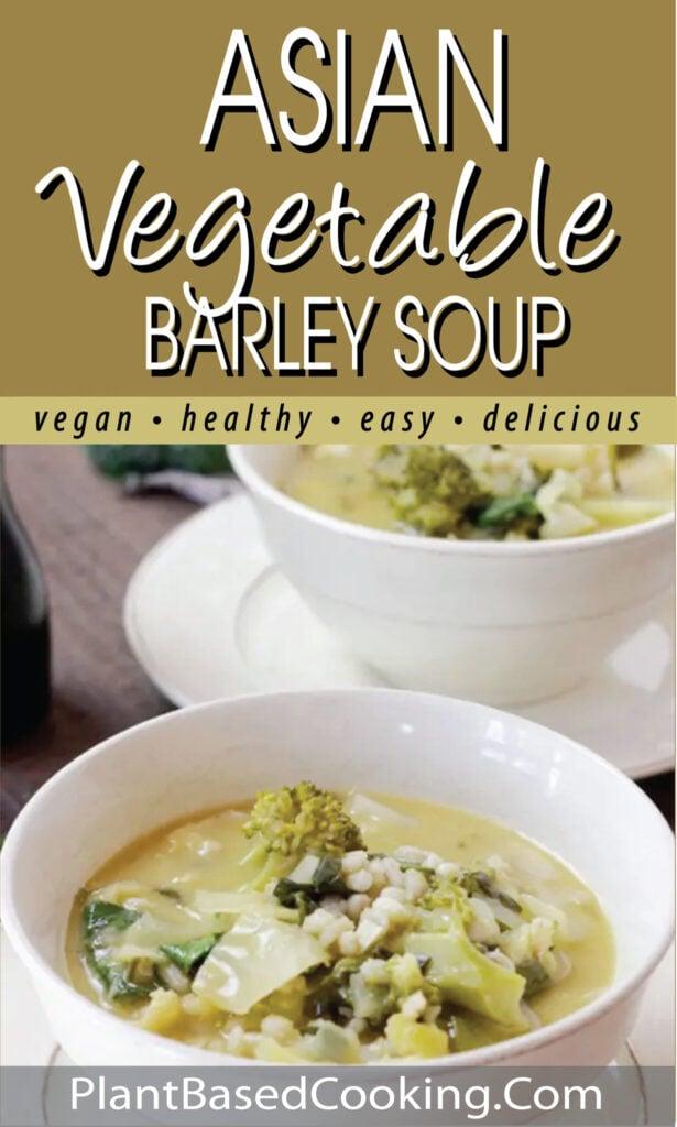 Asian Vegetable Barley Soup pin.